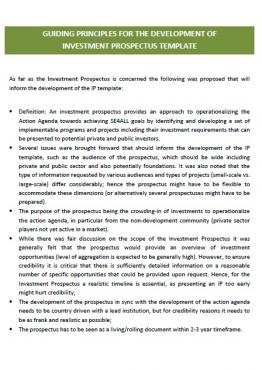 Guiding Principles For The Development Of Investment Prospectus Template