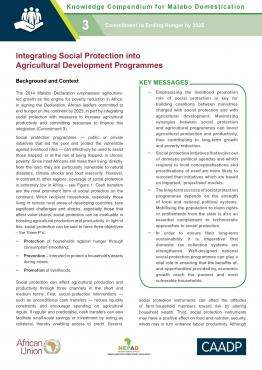 Integrating Social Protection into Agricultural Development Programmes