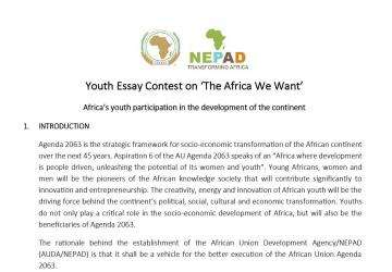 Entry Form Youth Essay Contest On The Africa We Want  Nepad  Help With Business Plan In South Africa also Analysis Essay Thesis Example  Genetically Modified Food Essay Thesis