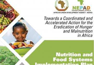 Nutrition and Food Systems Implementation Plan: Towards a Coordinated and Accelerated Action for the Eradication of Hunger and Malnutrition in Africa